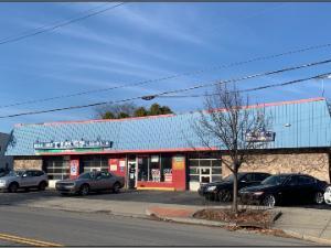 569 DELAWARE AVENUE, Albany, NY